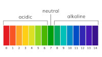 Understanding acidity & sourness 1