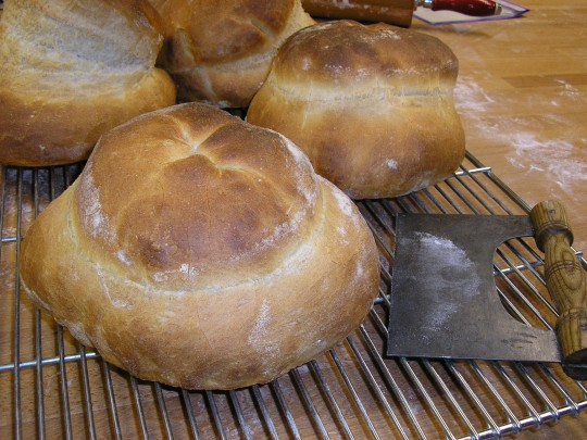 Panary | students cottage loaves